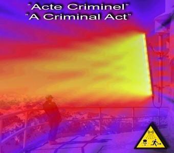 4 pav. Kriminalinis aktas