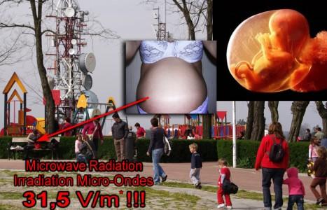 6 pav. Antenos vaikų žaidimų aikštelėje